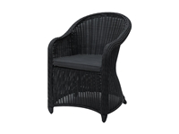 Poundex - P50134 - Outdoor Arm Chair