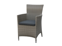 Poundex - P50132 - Outdoor Arm Chair